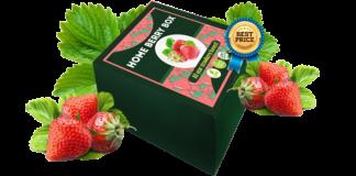 Home Berry Box, prezzo, opinioni, forum, Italia, funziona, recensioni