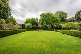 Perfect Grass, dove si compra, prezzo, amazon