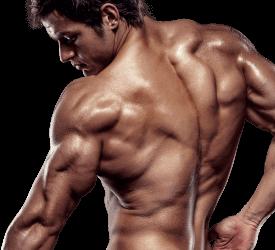 X-Muscle, prezzo, farmacia, amazon, dove si compra
